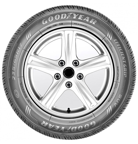 205/55R16 91W EfficientGrip Performance 2 TL-3