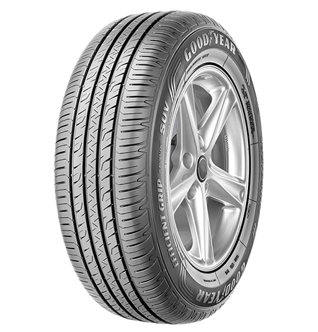 205/55R16 91W EfficientGrip Performance 2 TL-2